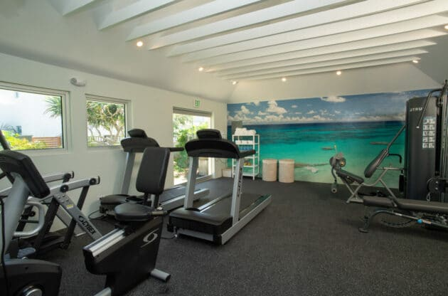 A gym with treadmills and other exercise equipment.